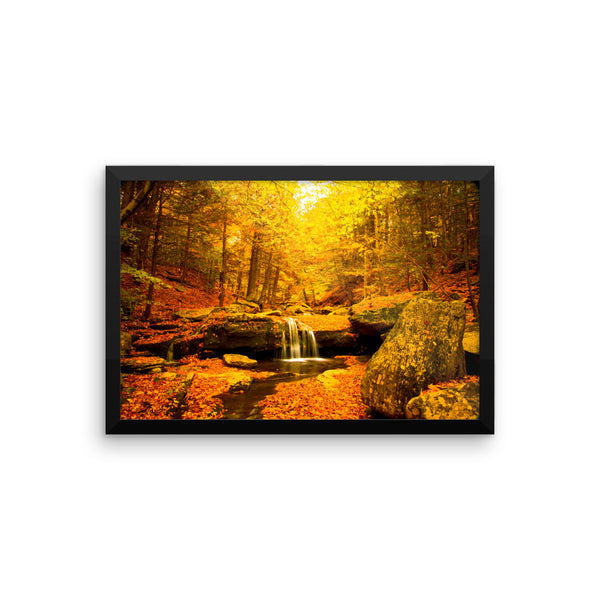 """Color Falls"" Fine Art Framed Print"