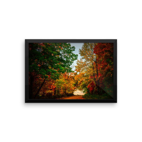 """Brilliant Trails"" Fine Art Framed Print"