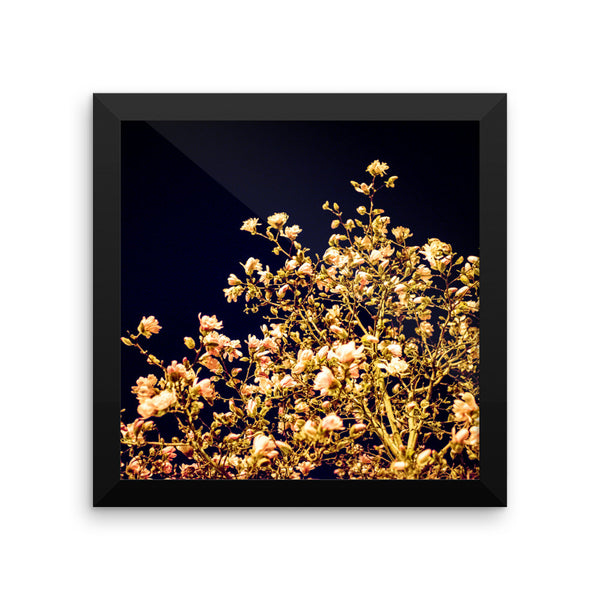 "NEW ""Evening Blossoms III"" Fine Art Framed Print"