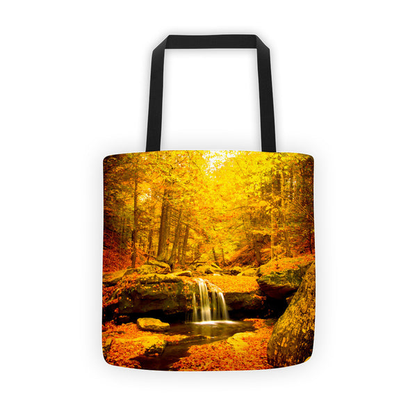 """Color Falls"" Tote bag"