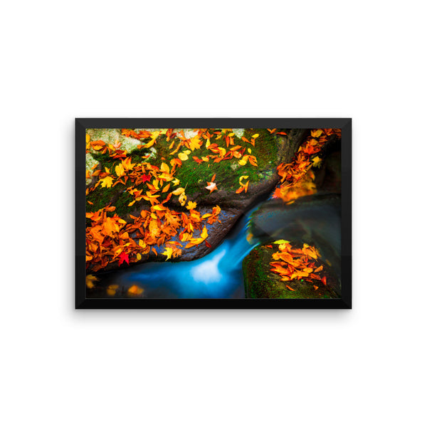 """Autumn Reflection"" Fine Art Framed Print"