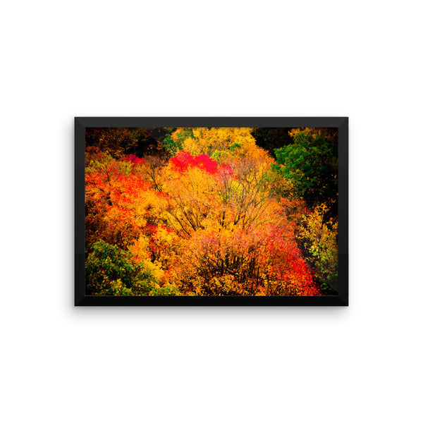 """Harvest Hues"" Fine Art Framed Print"