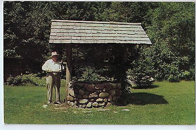 Vintage Postcard of The Wishing Well at Ed Gabe's Resort, Sayner, WI $10.00