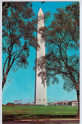 Vintage Postcard of The Washington Monument, Washington D.C. $10.00
