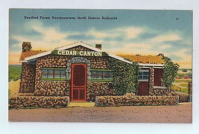 Petrified Forest Headquarters, North Dakota Badlands Vintage Postcard $10.00