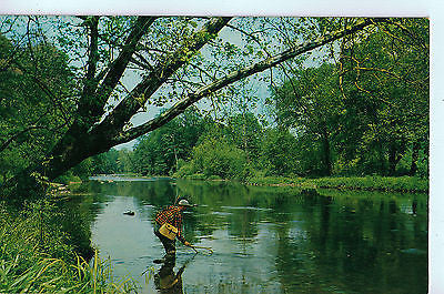 Vintage Postcard of Anxious Moments, Pennsylvania $10.00
