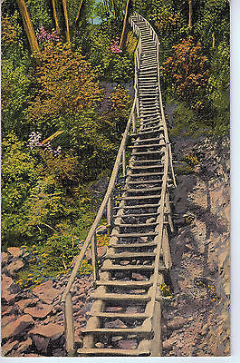 Vintage Postcard of the Ladder to Miners Falls, Munising, MI $10.00