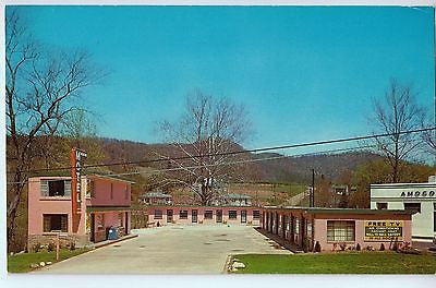 Vintage Postcard of The Alaine Motel in Asheville, NC $10.00