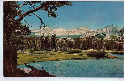 Vintage Postcard of Yosemite National Park, CA $10.00
