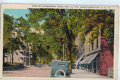 Vintage Postcard of the Surrender Tree in Schuylerville, NY $10.00