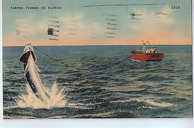 Vintage Postcard of Tarpon Fishing in Florida $10.00
