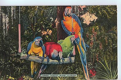 Vintage Postcard of Parrot Jungle, Miami, Florida $3.00