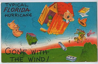 Vintage Postcard of a Florida Hurricane $10.00