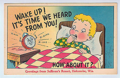 Greetings From Sullivan's Resort, Holcombe, WI Postcard UNUSED $7.00