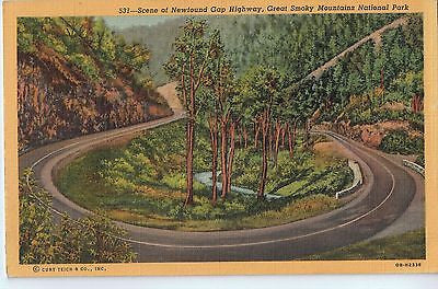 Vintage Postcard of Newfound Gap Highway, Great Smoky Mountains National Park $10.00