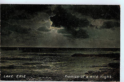 "Vintage Postcard of Lake Erie ""Promise of a Wild Night"" $10.00"