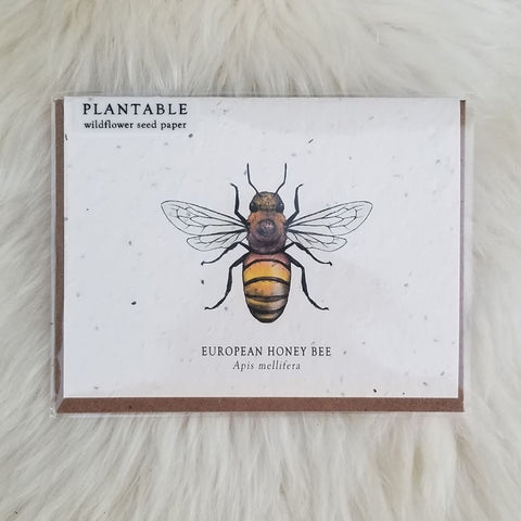 Honey Bee Plantable Wildflower Greeting Card