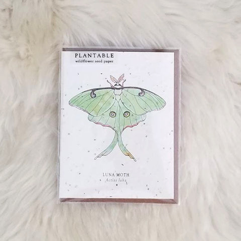 Luna Plantable Wildflower Greeting Card