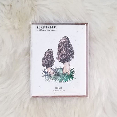 Morel Plantable Wildflower Greeting Card