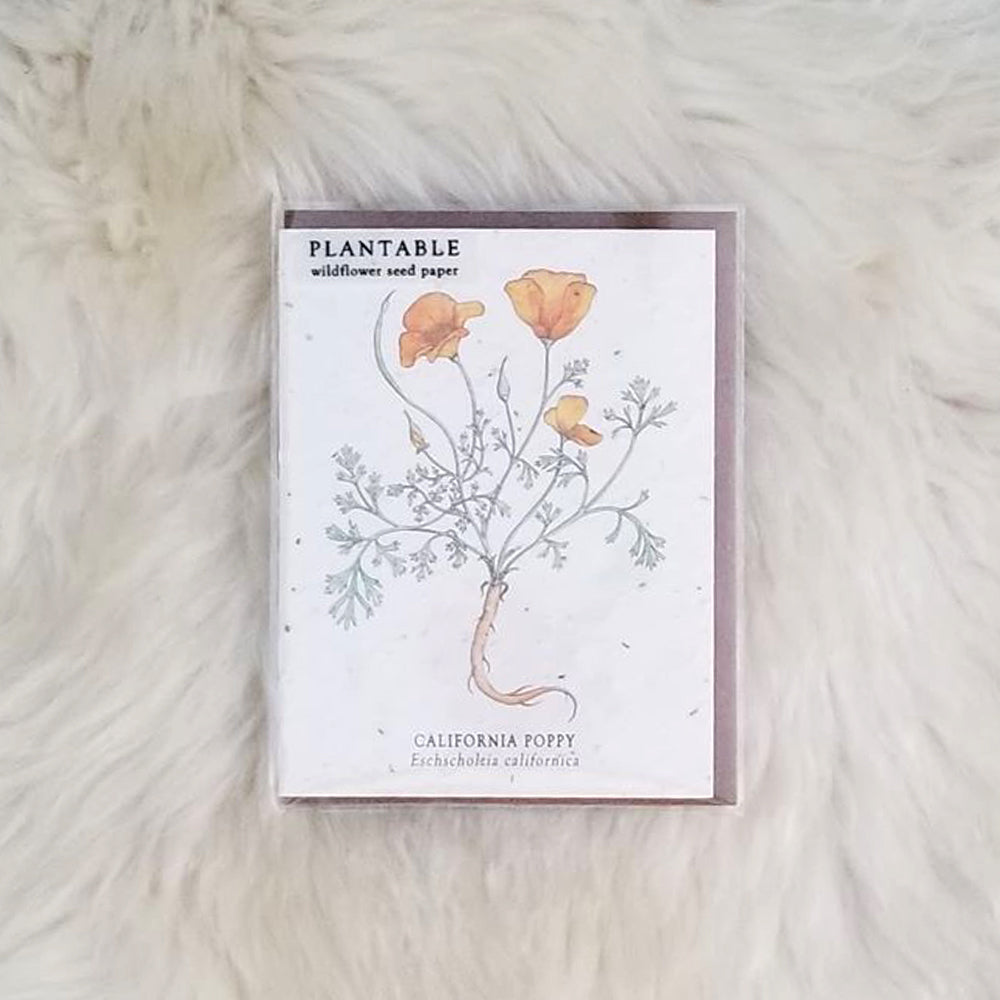 Poppies Plantable Wildflower Greeting Card