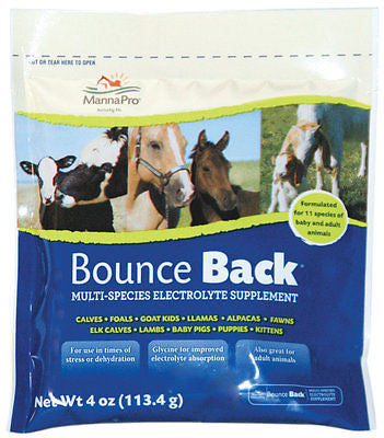 Manna Pro Bounce Back Multi-Species Electrolyte Supplement - For 11 Species - SK Tack & Supply