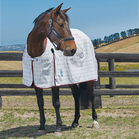 WeatherBeeta Kool Coat Standard Neck Horse Turnout Sheet - SK Tack & Supply - 1