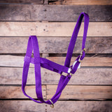 Premium 2 Ply Nylon Yearling Cow Halter - SK Tack & Supply - 2
