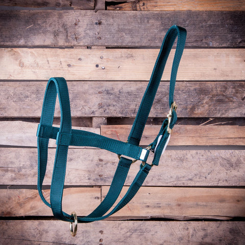 Premium 2 Ply Nylon Yearling Cow Halter - SK Tack & Supply - 1