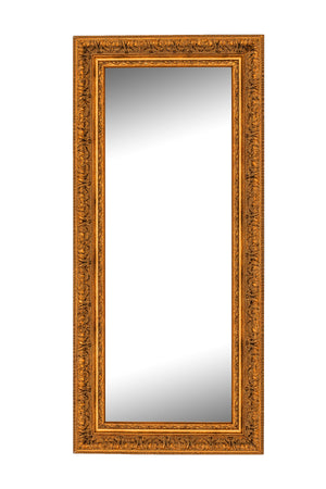 "Milano Gold Mirror Gold Mirrors Hitchcock Butterfield 24.5""W x 60.5""H"