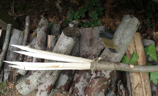 How To Make a Primitive Survival Spear