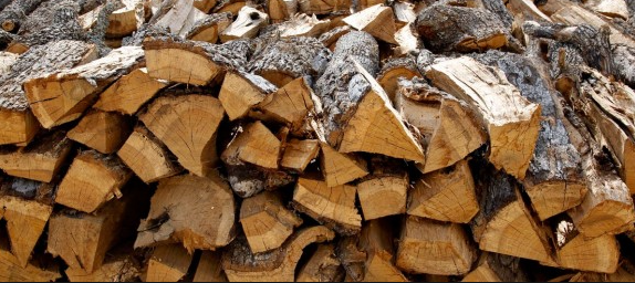 Which Wood Should You Use for Smoking Wild Game