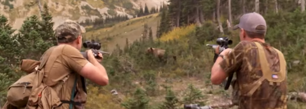 What To Do When You're Rushed by a Grizzly Bear