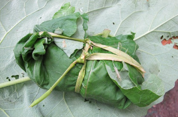 http://willowhavenoutdoor.com/featured-wilderness-survival-blog-entries/12-survival-hacks-using-just-leaves/