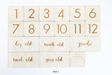 Wooden Milestone Life Kit