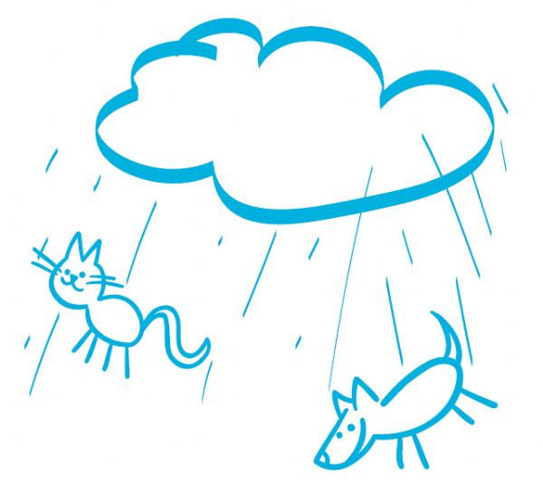 Printed Examination Table Paper - Raining Cats & Dogs (Case of 6 Rolls) - BH Medwear
