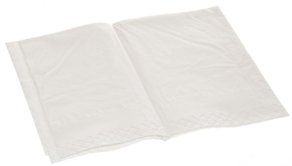 2-Ply Tissue Everyday Professional Tissue Towel (Case of 500) - BH Medwear