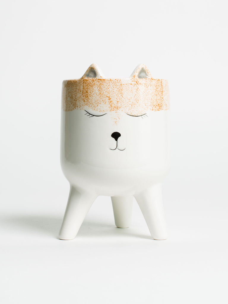 Fox Face Planter - Car & Kitchen
