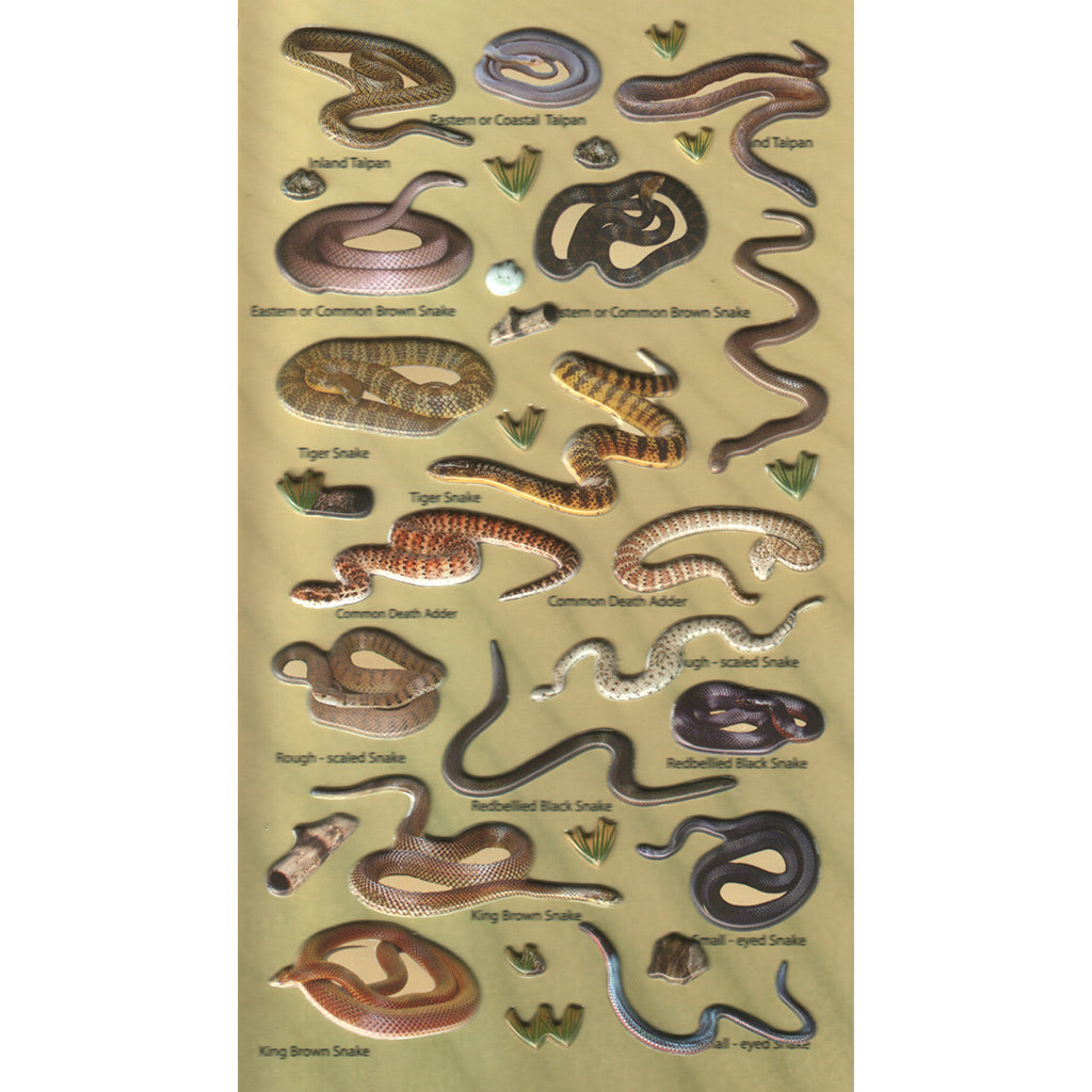 3DF-A-SNAKES-R - Tim The Toyman Australian Snakes 3D Foam Stickers