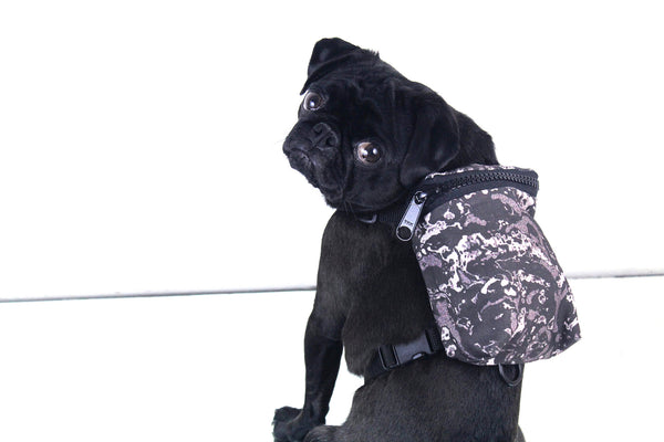 X-RAY DOG HARNESS BACKPACK