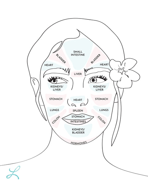 Face mapping: how face mapping can help to bring balance and ... on skin design, skin care lotion, skin avulsion injury, skin mole chart, skin craters, skin hamartoma, skin care face chart, skin lesion chart, skin printing, skin levels, skin drawing, skin nevus, skin lymphoma symptoms,
