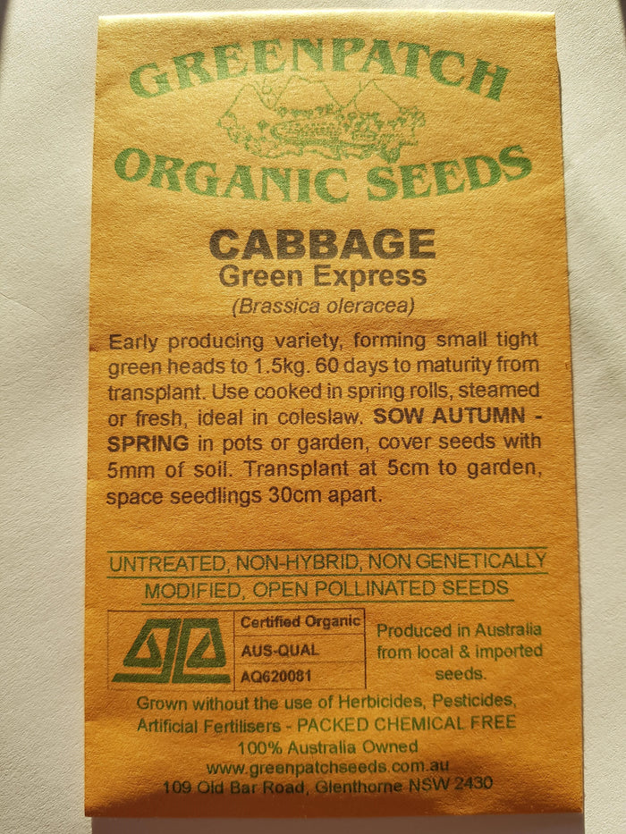 Green Patch Organic Seeds - Cabbage