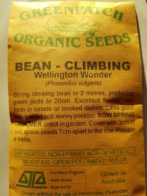 Green Patch Organic Seeds - `Climbing Bean Wellington Wonder