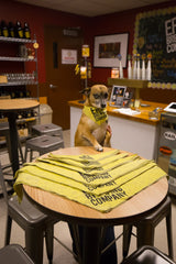 Dog Bandannas - Erie Brewing Company  - 1