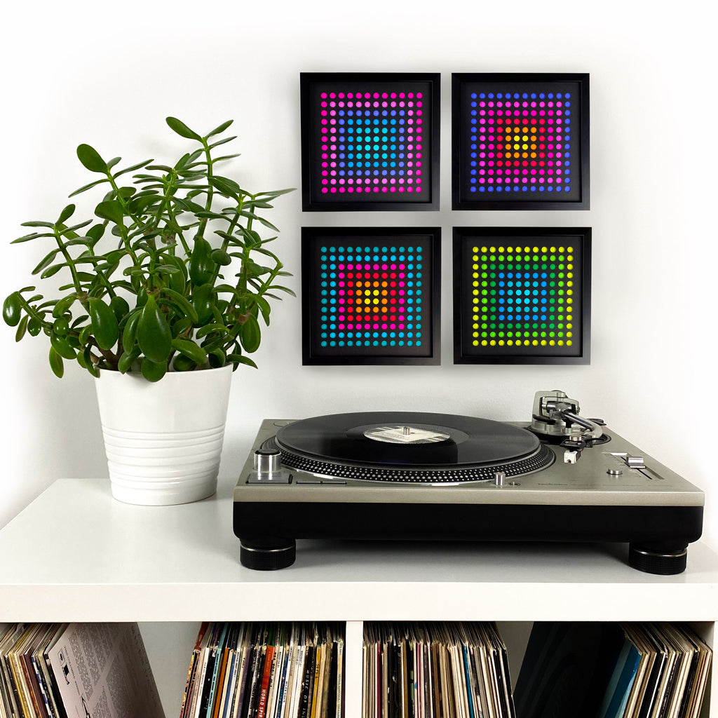 Trippy dots turntable plant
