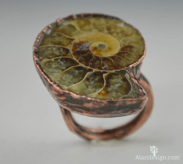 Ammonite Fossil Statement Ring