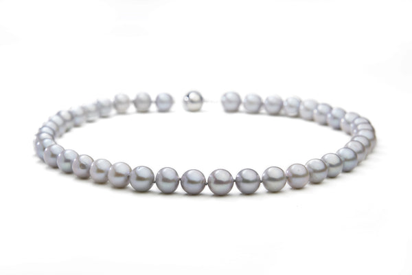 Silver Fresh Water Pearl Necklace with White Gold clasp