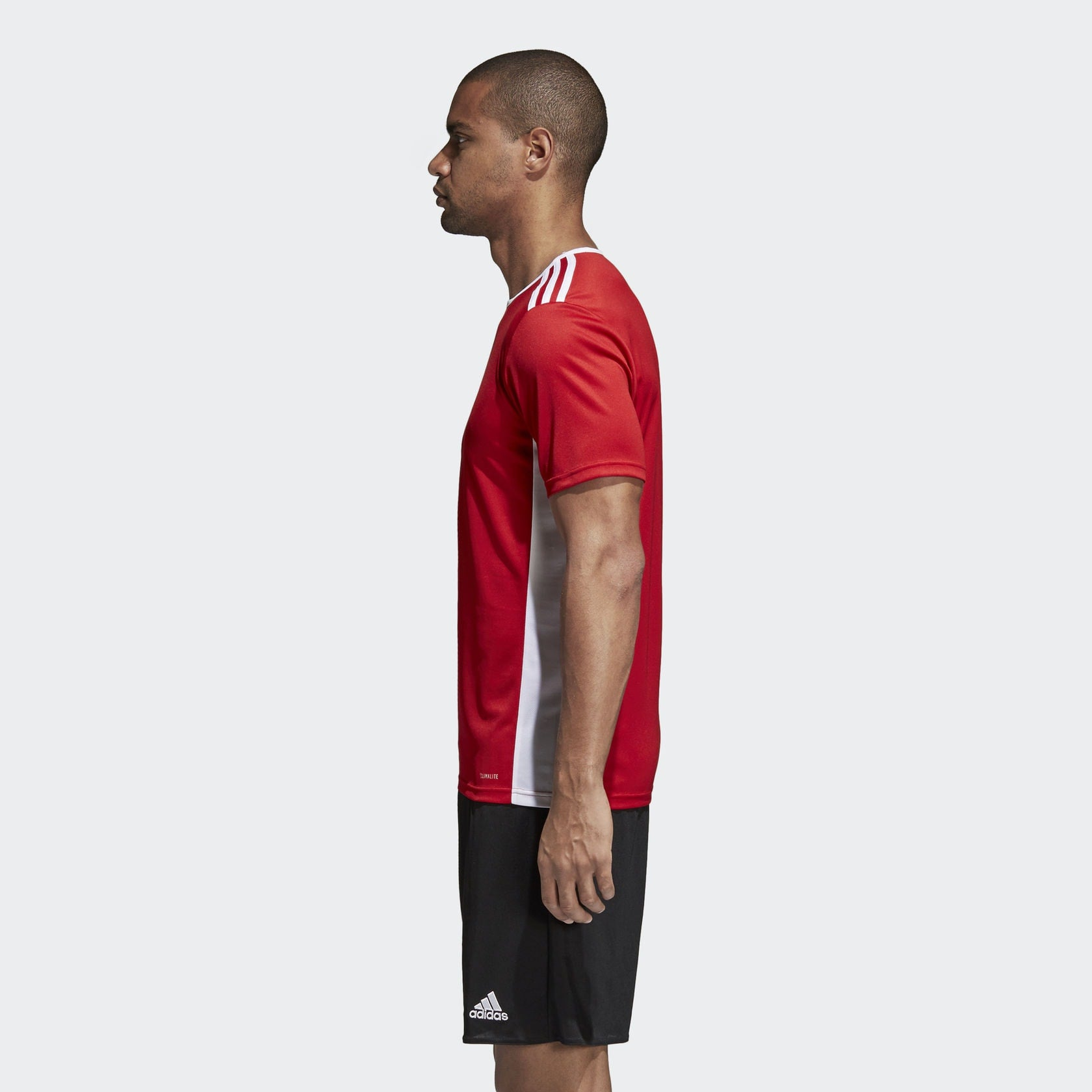 lower price with beauty popular brand adidas Entrada 18 Jersey