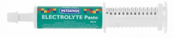 VETSENSE Electrolyte Paste 60ml