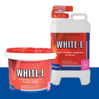Virbac - White E - The nautral anti-oxidant supplement for horses