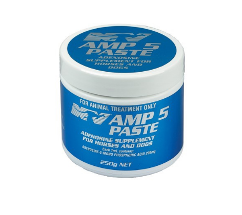 NV AMP-5 Paste 250gm